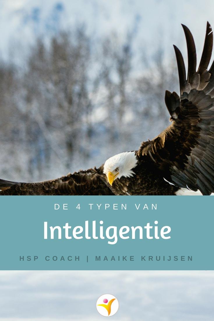 4 typen van intelligentie