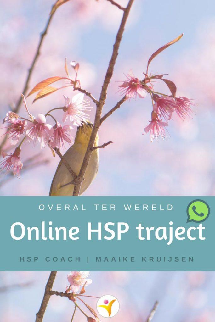 Online HSP traject - coaching telefonisch