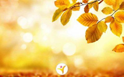 6 tips om de herfst leuker te maken
