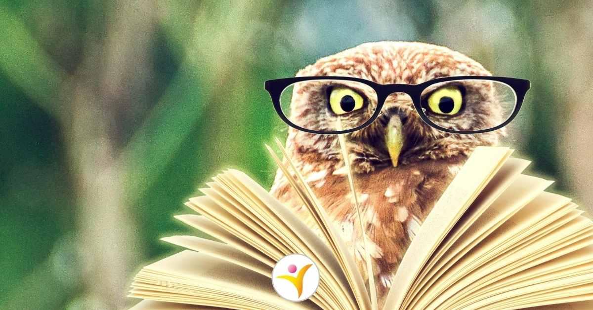 Boekentips over hoogbegaafdheid