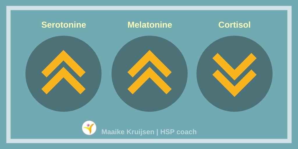 Een verzwaringsdeken voor HSP - hormonen