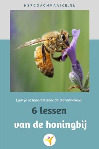 dingen die we van de honingbij kunnen leren