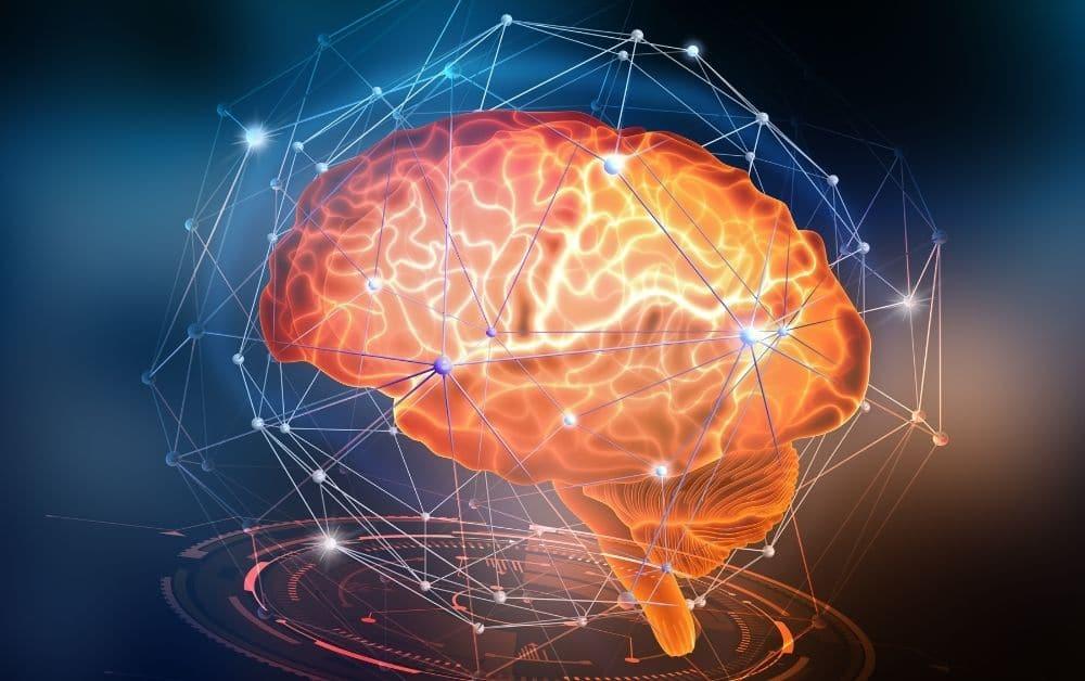 HSP en wetenschap - hoogsensitiviteit